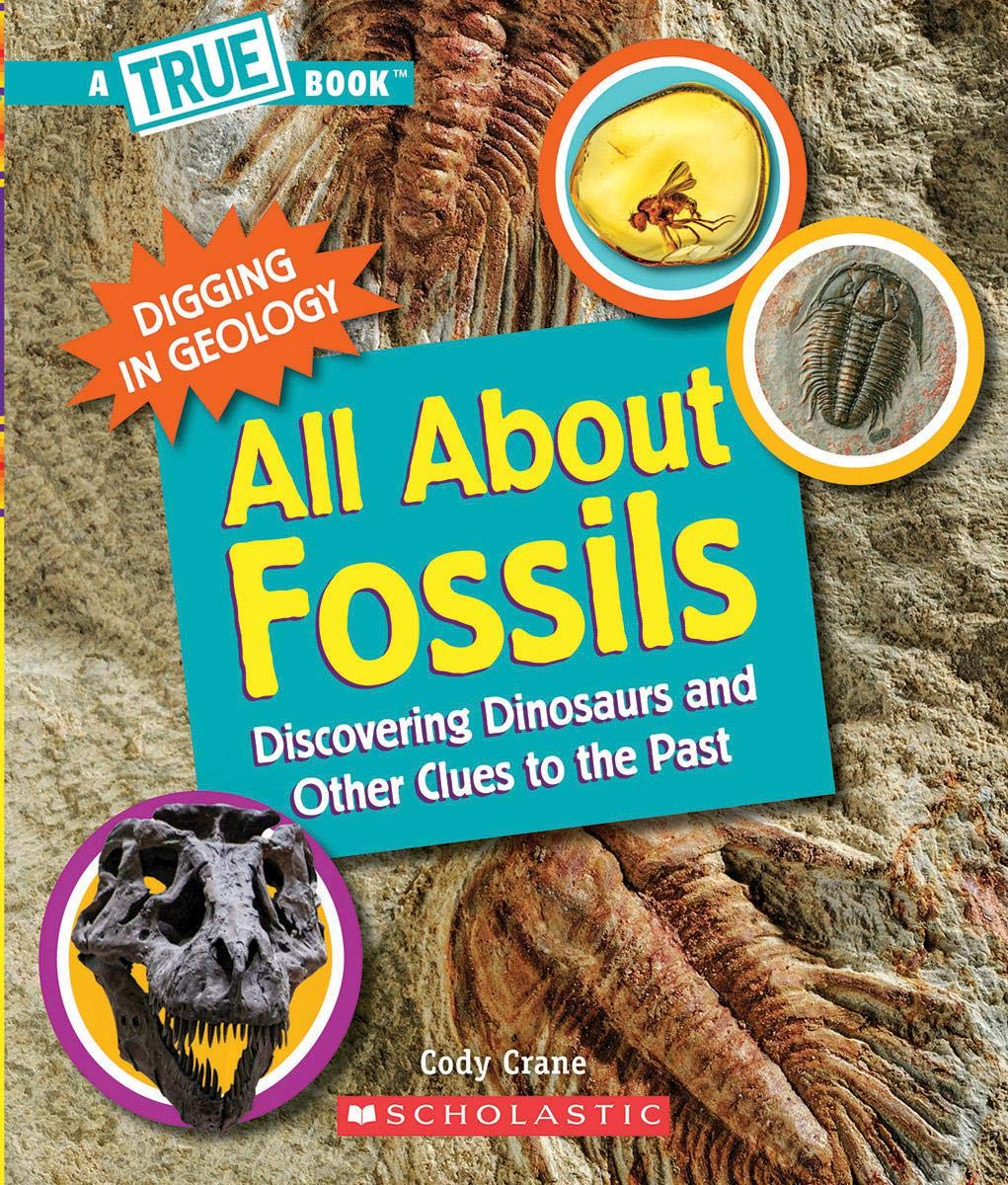 Book cover of ALL ABOUT FOSSILS